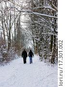 Купить «walking in the park in winter», фото № 17301002, снято 19 сентября 2018 г. (c) easy Fotostock / Фотобанк Лори