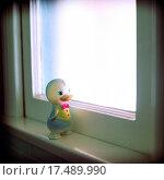 Купить «Vintage Rubber Duck», фото № 17489990, снято 24 января 2019 г. (c) easy Fotostock / Фотобанк Лори