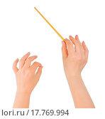 Купить «Music conductor hands», фото № 17769994, снято 20 сентября 2019 г. (c) easy Fotostock / Фотобанк Лори