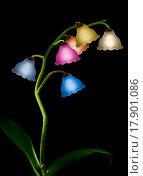 Цветок-светильник на черном фоне. Стоковое фото, фотограф Нефедьев Леонид / Фотобанк Лори