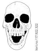 Купить «Human hand drawn skull fear death head dead pirate», фото № 17922322, снято 10 декабря 2019 г. (c) easy Fotostock / Фотобанк Лори