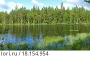 Купить «Река у леса в Карелии», видеоролик № 18154954, снято 27 декабря 2015 г. (c) Михаил Коханчиков / Фотобанк Лори