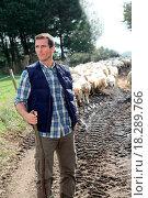 Купить «Breeding sheep», фото № 18289766, снято 24 января 2019 г. (c) easy Fotostock / Фотобанк Лори