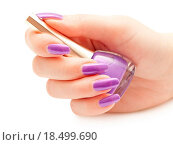 Купить «Nail polish in hand», фото № 18499690, снято 20 октября 2018 г. (c) easy Fotostock / Фотобанк Лори