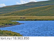 Купить «Озеро, лошади на пастбище и горы», фото № 18903850, снято 17 июля 2015 г. (c) Ольга Логачева / Фотобанк Лори