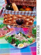 Купить «Pic_nic basket and salads», фото № 18958938, снято 14 ноября 2019 г. (c) easy Fotostock / Фотобанк Лори