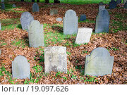 Купить «Historic tombstones across from burial spots for John Adams and John Quincy Adams, Quincy, Ma., USA», фото № 19097626, снято 22 февраля 2019 г. (c) easy Fotostock / Фотобанк Лори