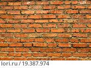 Текстура Кирпичная стена. Стоковое фото, фотограф Василий / Фотобанк Лори