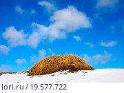 Купить «Tundra in winter», фото № 19577722, снято 18 сентября 2018 г. (c) easy Fotostock / Фотобанк Лори