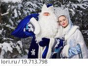 Купить «Дед Мороз и Снегурочка около заснеженной елки», фото № 19713798, снято 18 декабря 2015 г. (c) Дмитрий Черевко / Фотобанк Лори