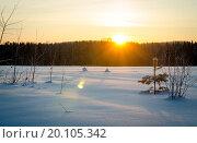 Снежная поляна залитая вечерними лучами солнца. Стоковое фото, фотограф Екатерина Ветошкина / Фотобанк Лори