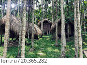 Купить «tribal houses in jungle photo», фото № 20365282, снято 10 мая 2009 г. (c) easy Fotostock / Фотобанк Лори