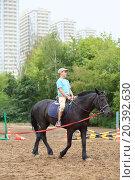 Купить «Boy in blue shirt riding a horse in park near the apartment complex», фото № 20392630, снято 14 августа 2014 г. (c) Losevsky Pavel / Фотобанк Лори