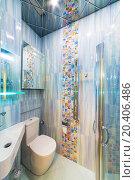 Купить «Modern bathroom with toilet bowl and washbasin», фото № 20406486, снято 14 января 2014 г. (c) Losevsky Pavel / Фотобанк Лори