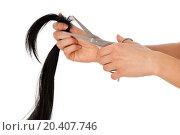 Купить «hairdresser cutting young woman with long black hair», фото № 20407746, снято 19 января 2020 г. (c) easy Fotostock / Фотобанк Лори
