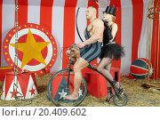 Two circus performers musclemen and girl ride on retro bike in striped tent. Стоковое фото, фотограф Losevsky Pavel / Фотобанк Лори
