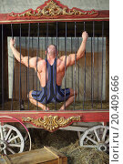 Strongman sitting on his haunches back in cage for animals. Стоковое фото, фотограф Losevsky Pavel / Фотобанк Лори
