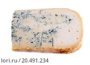 blue Gex cheese in front of white Background. Стоковое фото, фотограф cynoclub / easy Fotostock / Фотобанк Лори