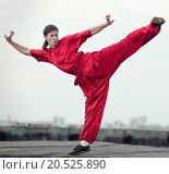 Купить «Shaolin warriors wushoo man in red practice martial art outdoor. Kung fu», фото № 20525890, снято 10 августа 2011 г. (c) easy Fotostock / Фотобанк Лори
