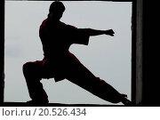 Купить «Shaolin warriors wushoo man silhouette practice martial art outdoor. Kung fu», фото № 20526434, снято 10 августа 2011 г. (c) easy Fotostock / Фотобанк Лори