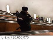 Купить «Сотрудники полиции на метрополитене», фото № 20650070, снято 16 января 2016 г. (c) Victoria Demidova / Фотобанк Лори