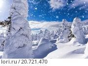 Падающий снег в зимней стране чудес с деревьями необычной формы, фото № 20721470, снято 14 марта 2015 г. (c) Евгений Ткачёв / Фотобанк Лори
