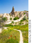 Rocks in Rose Valley of Goreme National Park in Central Anatolia, Turkey (2015 год). Стоковое фото, фотограф Наталья Волкова / Фотобанк Лори