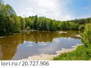 Майский пруд. Стоковое фото, фотограф Сергей Коровин / Фотобанк Лори