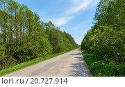 Дорога через лес. Стоковое фото, фотограф Сергей Коровин / Фотобанк Лори