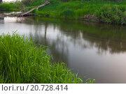 На речке. Стоковое фото, фотограф Сергей Коровин / Фотобанк Лори