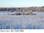 Купить «Зимний пейзаж с инеем», фото № 20728946, снято 29 декабря 2014 г. (c) Елена Коромыслова / Фотобанк Лори