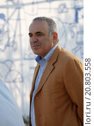 Купить «Leading chess player and major political activist Garry Kasparov was invited in Athens by the Stavros Niarchos Foundation to play chess with 15 young Greek Champions at the Stavros Niarchos Park.», фото № 20803558, снято 23 июня 2015 г. (c) age Fotostock / Фотобанк Лори