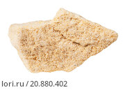 Купить «specimen of sandstone (arenite) mineral stone», фото № 20880402, снято 20 ноября 2018 г. (c) PantherMedia / Фотобанк Лори