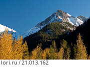 Купить «Mountain and trees in fall, Mineral King, Sequoia National Park, California.», фото № 21013162, снято 20 октября 2009 г. (c) age Fotostock / Фотобанк Лори