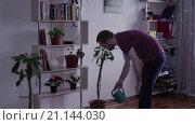 Купить «Мужчина поливает цветы», видеоролик № 21144030, снято 22 января 2016 г. (c) Валентин Беспалов / Фотобанк Лори