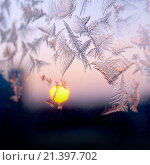 Купить «Мороз и солнце, узор на зимнем окне», фото № 21397702, снято 24 января 2016 г. (c) ElenArt / Фотобанк Лори