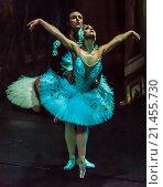 """Купить «Сцена из балета """"Лебединое озеро""""», фото № 21455730, снято 7 декабря 2015 г. (c) age Fotostock / Фотобанк Лори"""