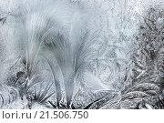Купить «Ice Patterns On A Winter Window,Close Up», фото № 21506750, снято 24 января 2013 г. (c) easy Fotostock / Фотобанк Лори
