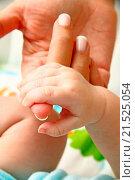 Купить «Mother holding her baby's hand», фото № 21525054, снято 24 ноября 2013 г. (c) easy Fotostock / Фотобанк Лори