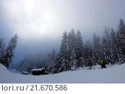 Купить «Krippenbrunn, Austria, snowy landscape with high fog», фото № 21670586, снято 4 февраля 2015 г. (c) Caro Photoagency / Фотобанк Лори