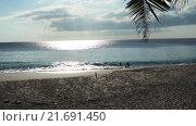 Купить «Сейшельские острова. Пляж с видом на синий океан», видеоролик № 21691450, снято 31 января 2016 г. (c) Алексей Собченко / Фотобанк Лори