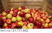 Красные яблоки в коробке. Стоковое видео, видеограф Kozub Vasyl / Фотобанк Лори