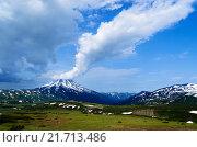 Вид на вулкан Вилючинская сопка. Камчатка, Россия. Стоковое фото, фотограф Валерий Трубицын / Фотобанк Лори