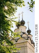 Купола церкви Святого Антипия в г. Суздаль (2014 год). Стоковое фото, фотограф Денис Фоломеев / Фотобанк Лори