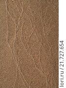 Песчаный фон. Стоковое фото, фотограф Алексей Лобанов / Фотобанк Лори