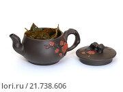 Купить «Чайник с зеленым чаем и крышкой», фото № 21738606, снято 8 февраля 2016 г. (c) Дмитрий Крамар / Фотобанк Лори