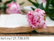 Купить «Розовый пион на открытой книге», фото № 21738670, снято 16 июня 2015 г. (c) Лидия Рыженко / Фотобанк Лори