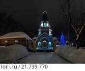 Купить «Иоакимо-Анненский храм (Ульяновск, Россия) ночью, на фоне зимнего пейзажа», фото № 21739770, снято 28 января 2011 г. (c) oleg savichev / Фотобанк Лори