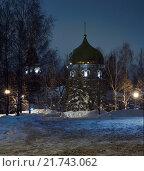 Иоакимо-Анненский храм (Ульяновск, Россия) ночью, на фоне зимнего неба, и деревья (ели, березы), покрытые снегом. Стоковое фото, фотограф oleg savichev / Фотобанк Лори