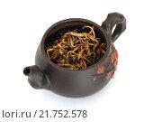 Купить «Чайник с желтым чаем», фото № 21752578, снято 8 февраля 2016 г. (c) Дмитрий Крамар / Фотобанк Лори